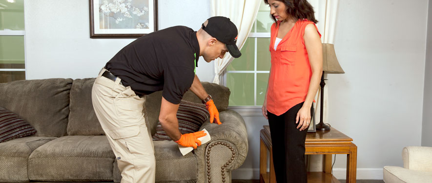 Sunset Hills, MO carpet upholstery cleaning